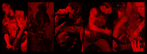 Belligerence-coverphoto