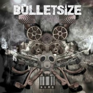 Bulletsize cover