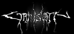 Grimsvotn logo