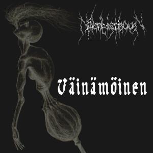 Nihilistinen Barbaarisuus Vainamoinen Cover 2013