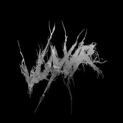 Vuyvr Logo