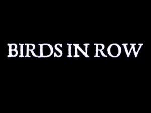 Birds in Row logo