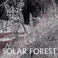 Haunt - Solar Forest